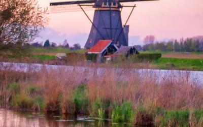 Windmill Painting Venice