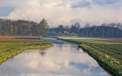 Reflections of Holland 3