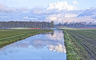 Reflections of Holland