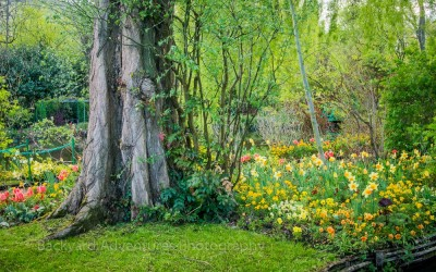 Monet Garden 13