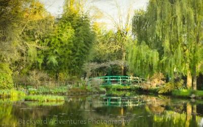 Monet garden 17