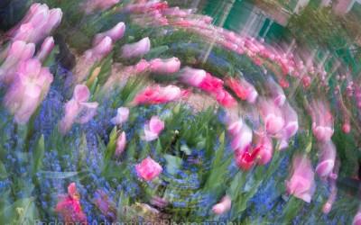 Monet's Garden Creative