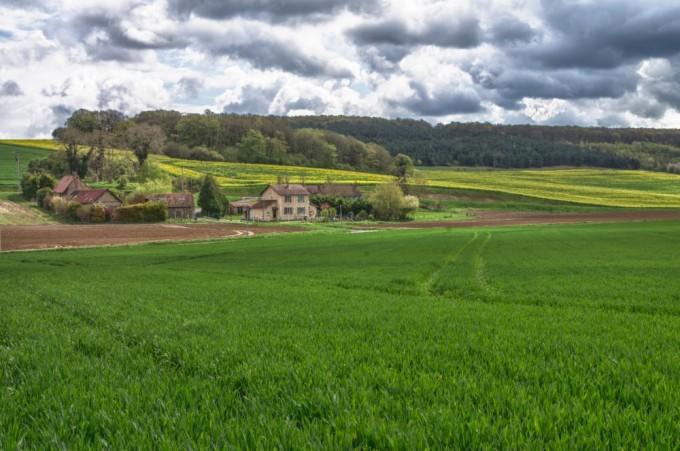 French Farm/Countryside