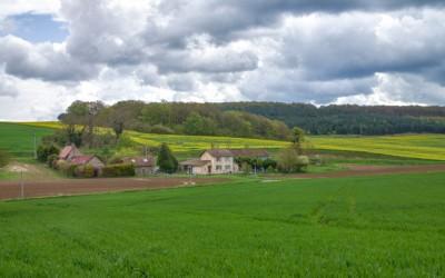 French Farm-18